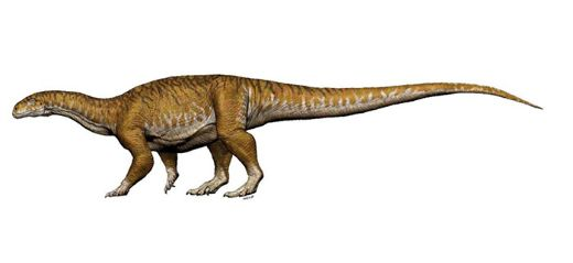 "Meet ""Ingentia Prima,"" The World's Earliest-Known Giant Dinosaur!"