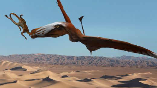 Giant Pterosaur Found In Utah Quarry Had 110 Teeth And Some Wicked Fangs!
