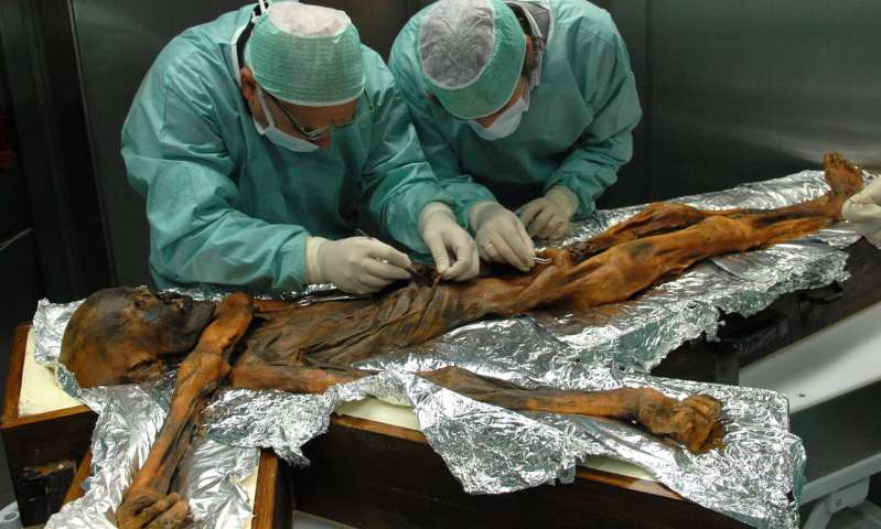 Ötzi The Iceman's Last Meal Was A Delicious High-Calorie Feast