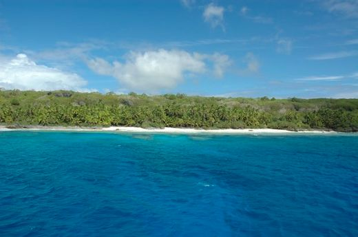 The Once Pristine Henderson Island Is Now Covered With Plastic Waste