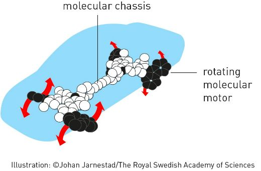 Chemistry Nobel Prize Winners Used Molecules To Build Tiny Machines And Cars