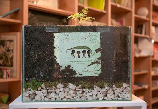 Tree-book-tree-germinating-in-book-store-medium