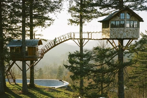 The Incredible (Tree)House That Foster Huntington Calls Home Kids News Article