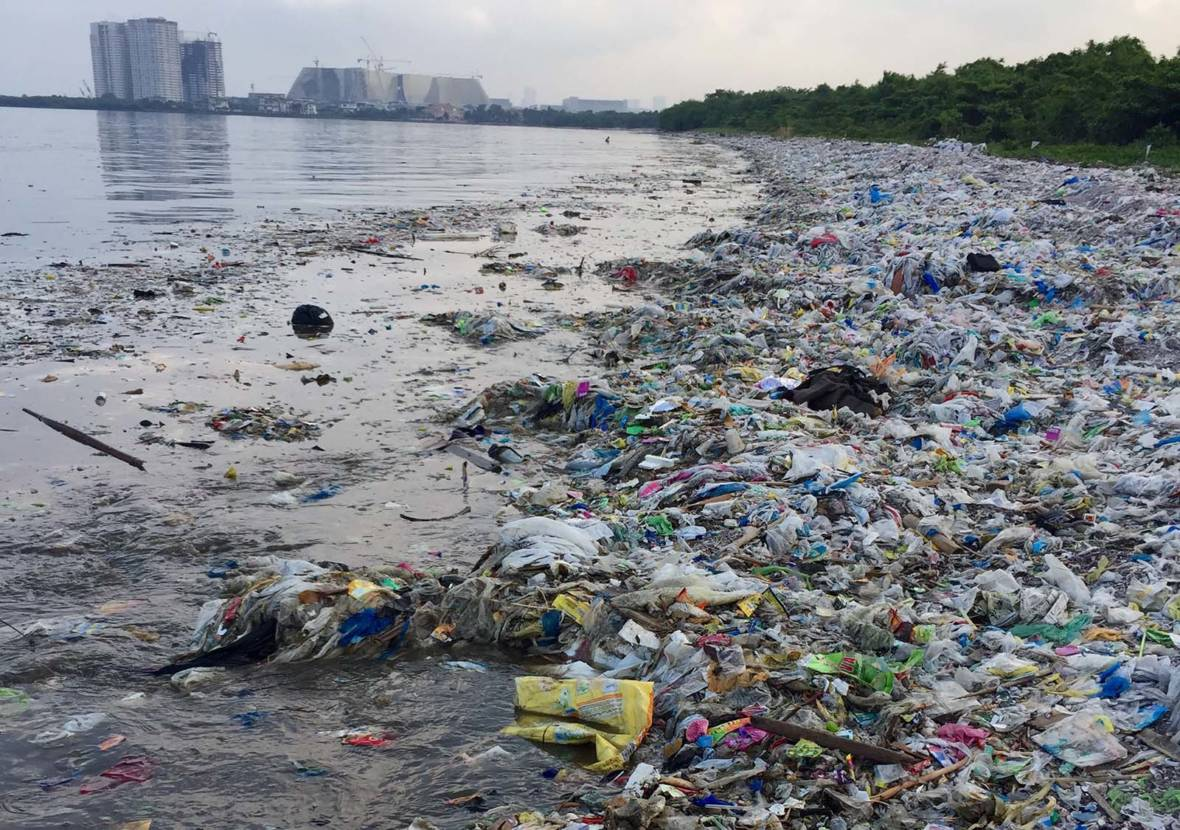 Just In Time For Earth Day — A Plastic-Eating Enzyme!
