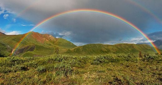 800px-double-alaskan-rainbow-airbrushed-medium