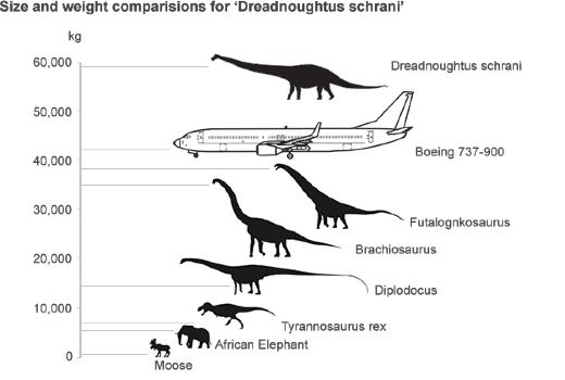 dreadnoughtus size_20140904_624 medium massive dreadnoughtus and alien like spinosaurus the latest