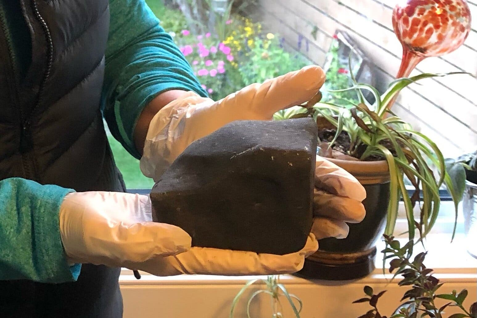 British Columbia Resident Gets Rudely Awakened By A Falling Meteorite
