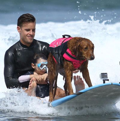 Surf Dog Ricochet Brings Joy To Kids With Spinal Muscular Atrophy