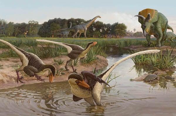 'Warrior' Velociraptor Cousin May Have Been Among The Last Surviving Raptors