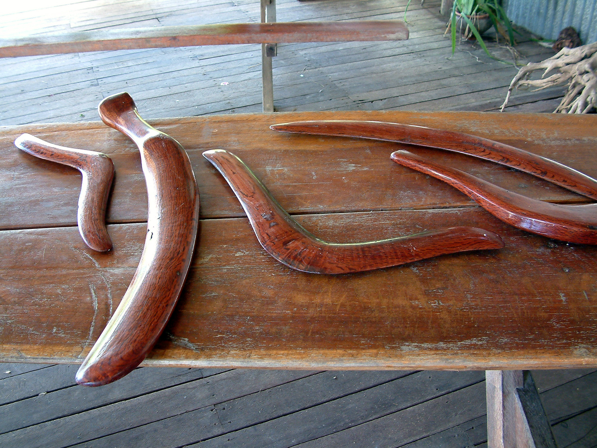 Analysis Of Ancient Aboriginal Skeleton Indicates Boomerangs Were Once Used As Lethal Weapons