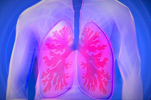 Lungs Don't Just Help Us Breathe —They Produce Blood, Too