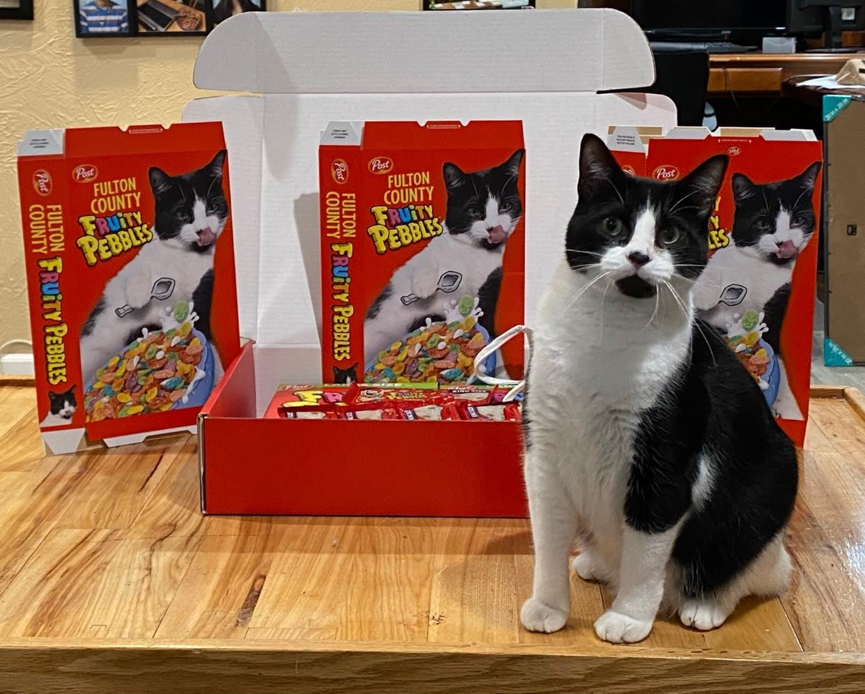 Cereal-Loving Rescue Cat Gets A Custom Delivery Of Fruity Pebbles
