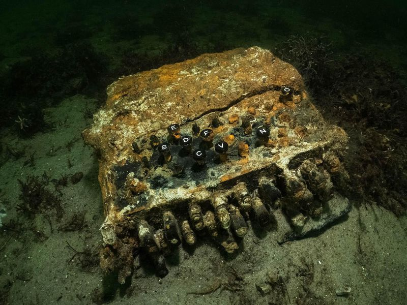 Rare Nazi WWII Enigma Machine Discovered In The Baltic Sea