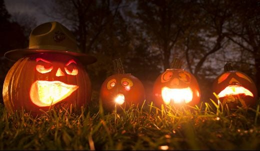 Eating Your Halloween Pumpkin Is Good For Your Tummy And The Planet!