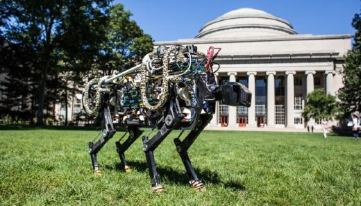 MIT's Robotic Cheetah Gets Ready To Take On The World (And Usain Bolt)