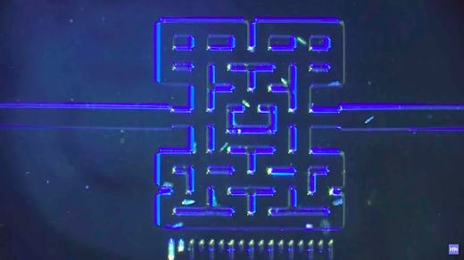 Norwegian Researchers Create Microscopic Pac-Man Game To Observe Microbes