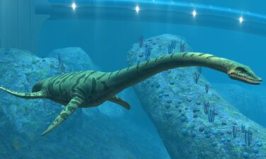 Fossil Of Gigantic Loch Ness Monster Look-Alike Unearthed In Antarctica