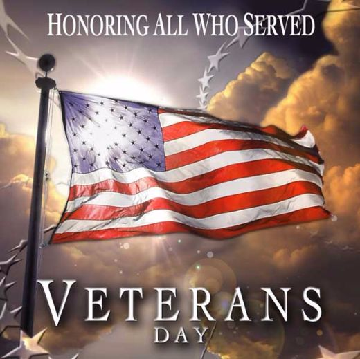 Everything You Want To Know About Veterans Day And More!
