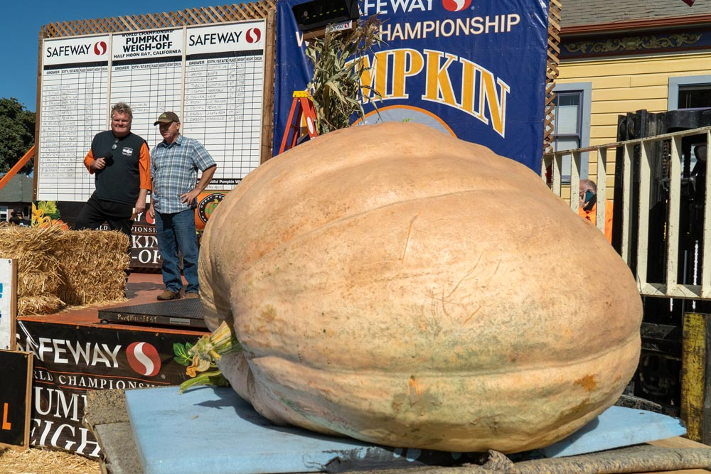 """2,191-Pound Mega Gourd Takes Top Prize At The """"Super Bowl"""" Of Pumpkin Competitions"""