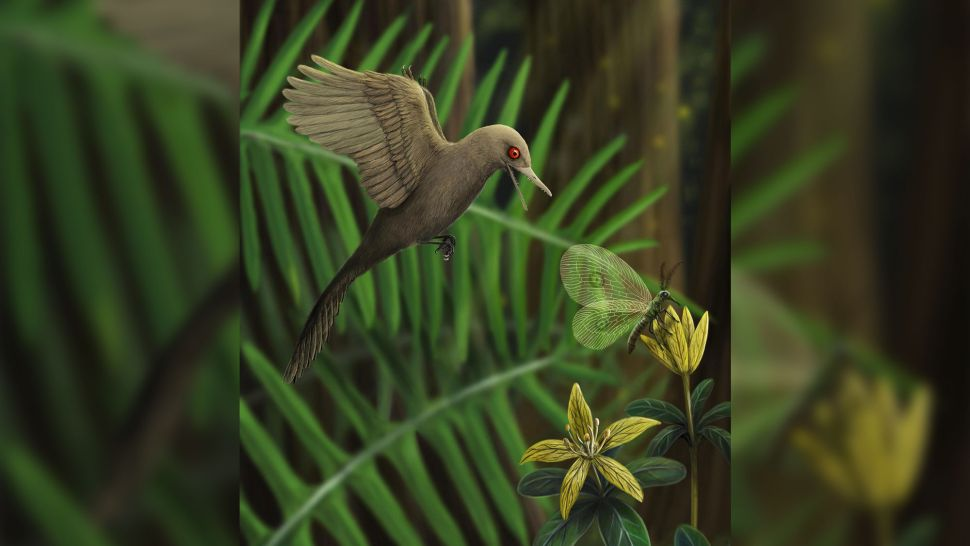 The World's Smallest-Known Dinosaur Measured Less Than 2.25 Inches!