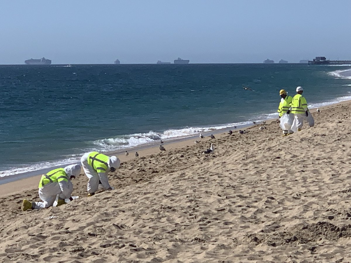 Oil Spill Off The Coast Of California Closes Beaches And Threatens Wildlife