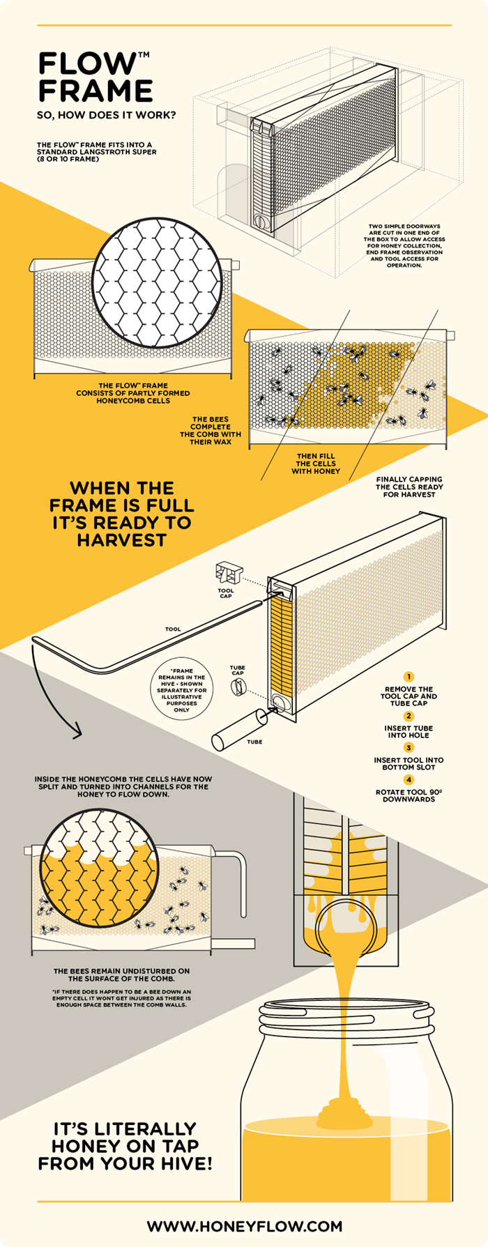diagram of inside a beehive