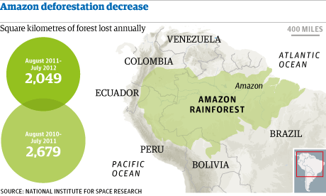 Amazon rainforest deforestation shows positive trends kids news article while destruction of rainforests is causing concern in many parts of the world nowhere is it worse than in the amazon often referred to as the lungs of gumiabroncs Choice Image
