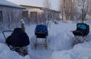 Nordic Babies Take 'Chilling Out' To A New Level