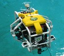 Ingenious Coralbots May Help Restore Coral Reefs