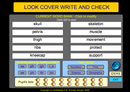 Look, Cover, Write And Check
